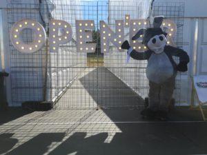 Open'er Festival trwa – Zapraszamy na strefę NGO!